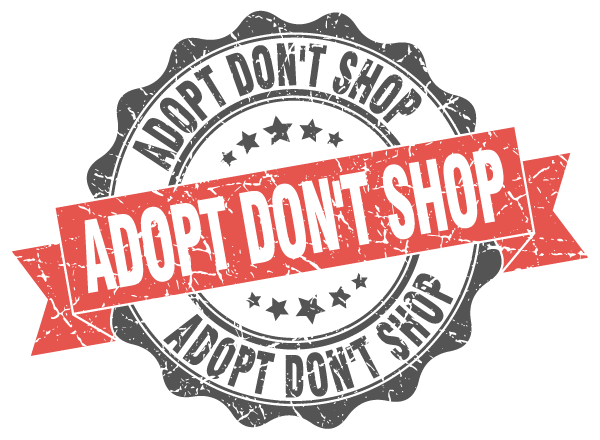Adopt dont shop stamp