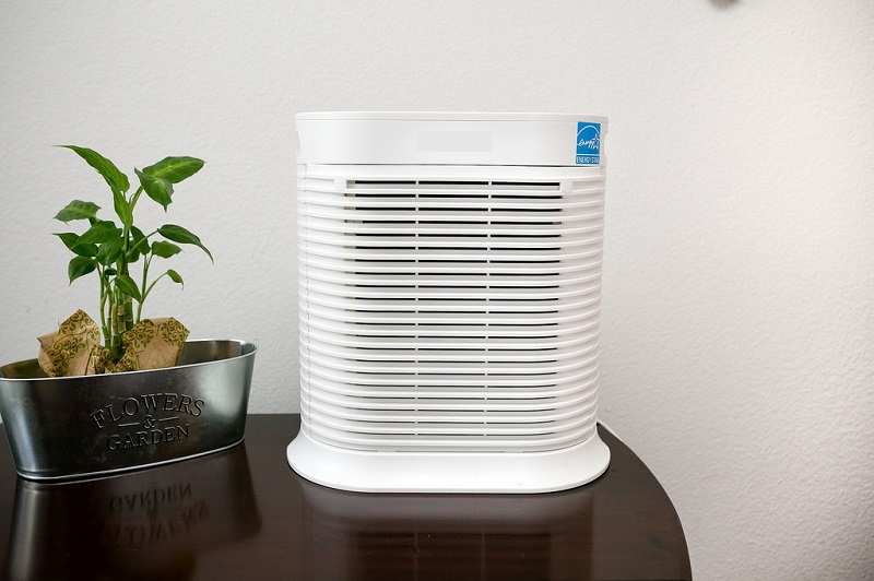 best air purifier for cat hair and dog hair 2019