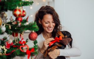 tips to keep puppy safe this Christmas