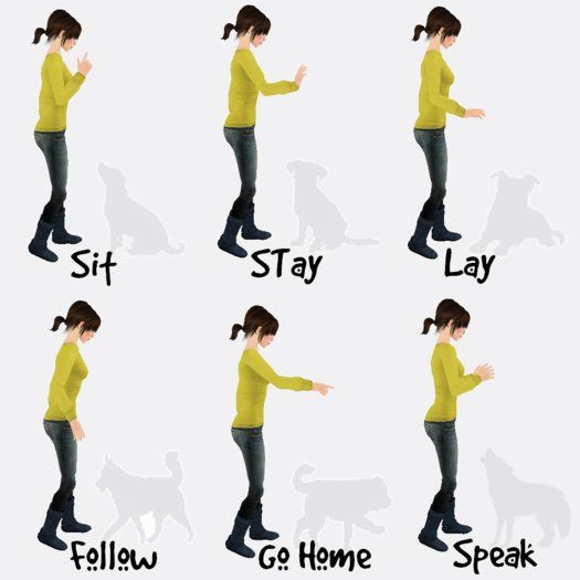 dog training hand signals chart