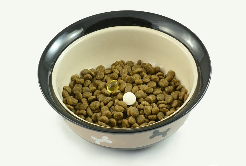 Dog food supplements of fish oil and glucosamine for older dogs with arthritis and dog athletes for joint health placed in bowl of dog food