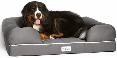 petfusion dog bed for large dogs