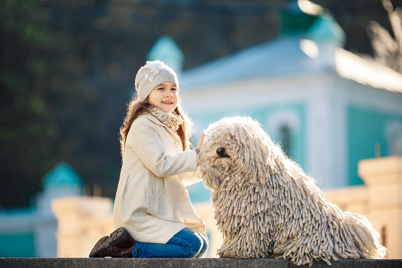 Cute little girl with her dog Puli sitting on the ground
