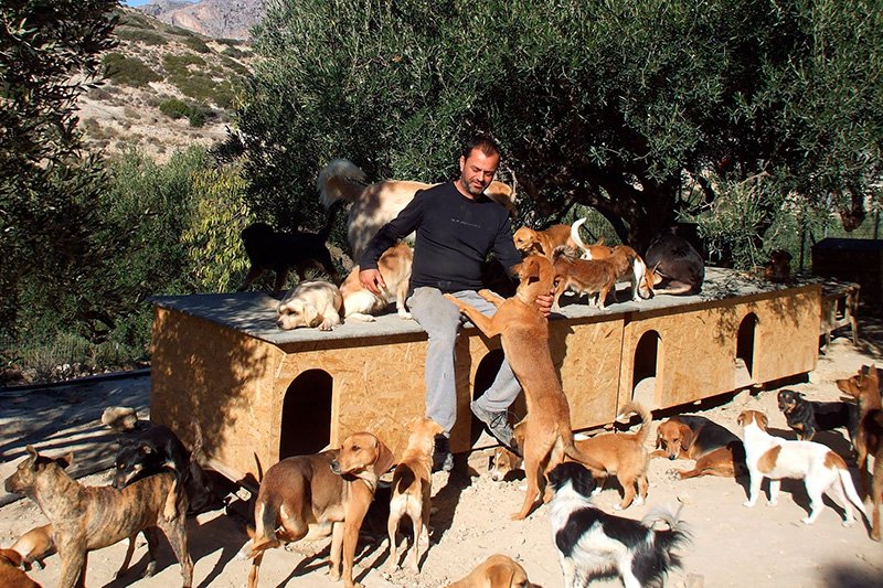 Takis sitting with dogs all around him at the shelter in Crete