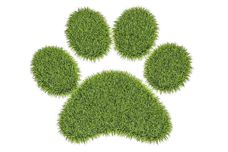 Dog paw made out of grass